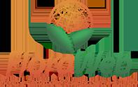 Entrega internacional flores e cestas de presente: Floraweb